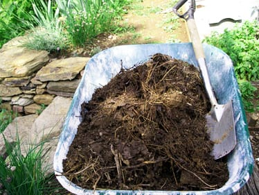 Ściółka z kompostu