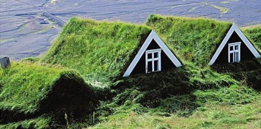Ekstensywne zielone dachy