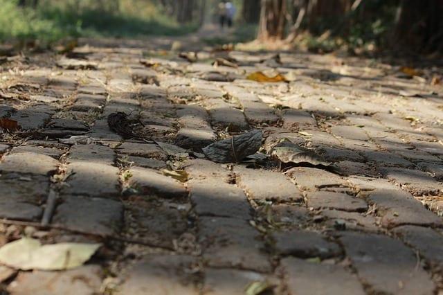 Źle wykonane ścieżki ogrodowe nie tylko słabo wyglądają, ale są również niebezpieczne.