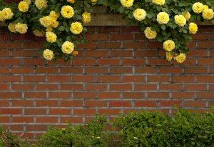 ogrodzenia ogrodowe murowane