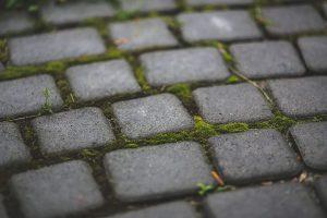 PoradyOgrodnicze.pl - Jakich materiałów użyć do wykonania obrzeży trawnika - kostka