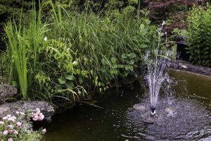 PoradyOgrodnicze.pl - Pomysły na fontannę w ogrodzie - fontanna oczko wodne