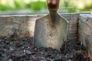 poradyogrodnicze-pl-zakladanie-trawnika-na-jesien-przygotowanie-gleby