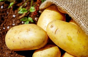 Przechowywanie warzyw na zimę
