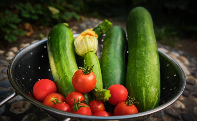 jak rozplanować ogród warzywny